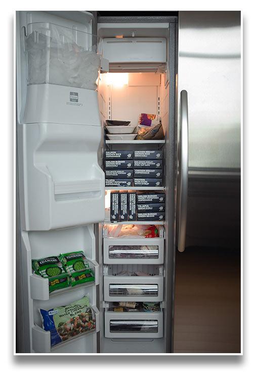B-Elite Fuel Freezer Space