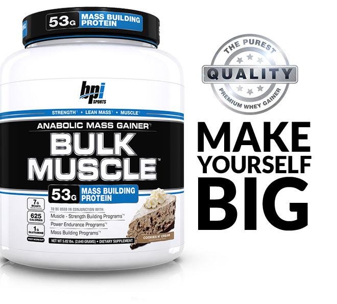 bulk-muscle-header