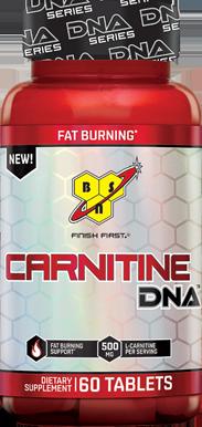 DNA Series Carnitine Bottle Image
