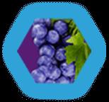 Furious Grape