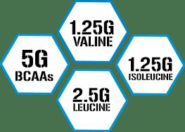 5g BCAAs - 1.25g Valine - 2.5g Leucine - 1.25g IsoLeucine