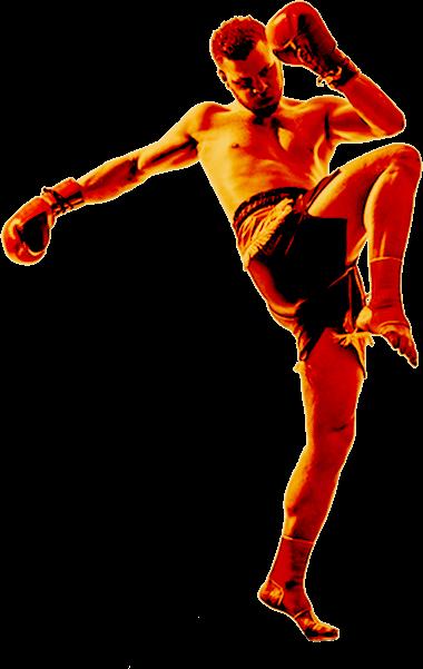 Fighter Posing