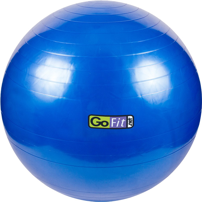 Buy 75cm Exercise Ball: Exercise Ball By GoFit At Bodybuilding.com