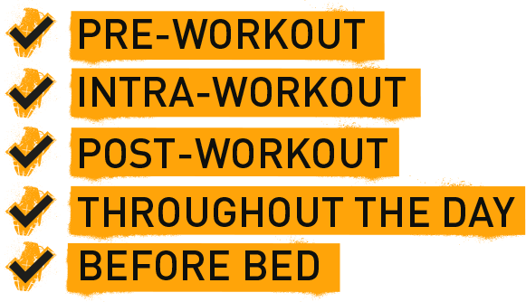Pre-Workout. Intra-Workout. Post-Workout. Throughout the Day. Before Bed.