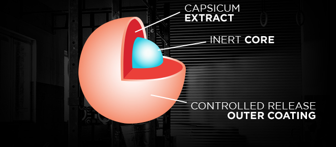 Capsicum Extract. Inert Core. Controlled Release Outer Coating.