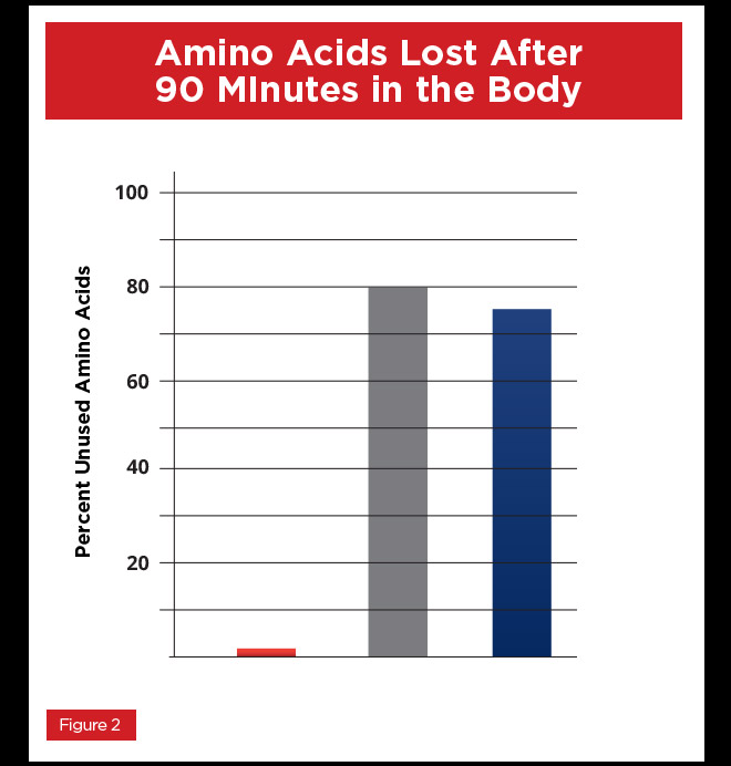 Amino Acids Lost After 90 Minutes in the body