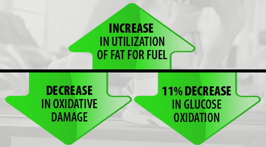 Increase in utilization of fat for fuel. Decrease in oxidative damange. 11% decrease in glucose oxidation