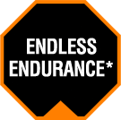 Endless Endurance*