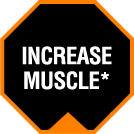 Increase Muscle*