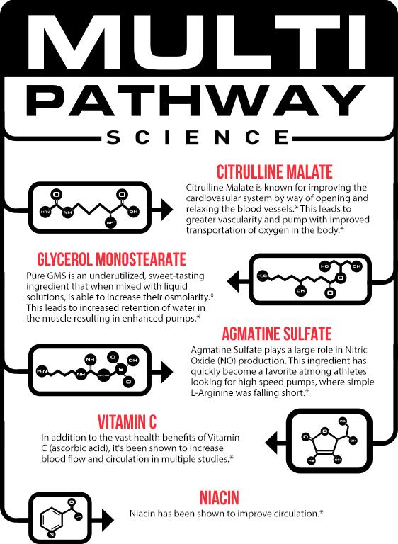 Multi Pathway Science. Citrulline Malae. Glycerol Monostearate. Agmatine Sulfate. Vitamin C. Niacin.