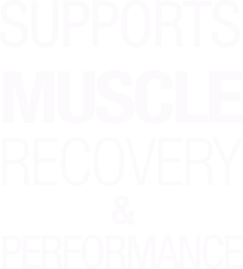 Supports Muscle Recovery and Performance*