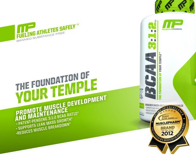 The foudnation of your temple. Promote muscle development and maintenance. Patent-pending 3:2:1 BCAA ratio.* Supports lean mass growth.* Reduces muscle breakdown.*