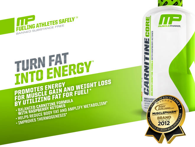 MusclePharm Carnitine Core - Turn Fat Into Energy - Promotes energy for muscle gain and weight loss by utilizing fat for fuel! Balanced carnitine formula with raspberry ketones, helps reduce body fat and amplify metabolism, improves thermogenesis*