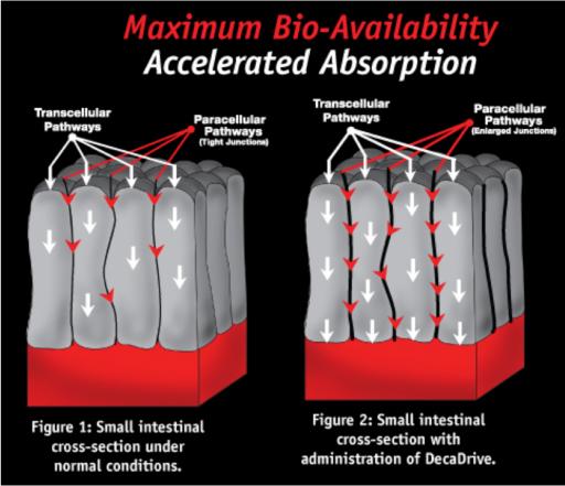 maximum-bio