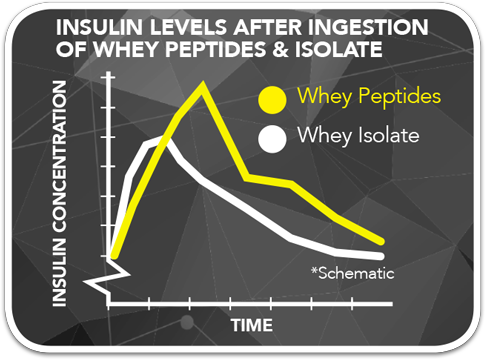 Insulin Levels After Ingestion of Whey Peptides & Isolate