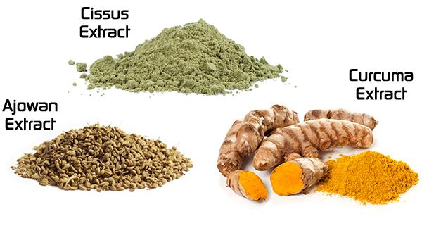Cissus Extract. Ajowan Extract. Curcuma Extract.