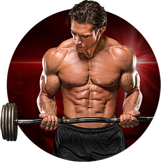 Model of male fitness workingout