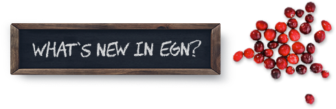 What's New in EGN?
