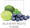 Blueberry Mojito Flavor