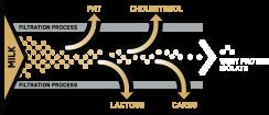Diagrama del proceso de filtración