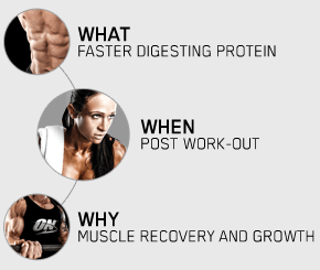 What: Faster digesting protein. When: Post Work-Out. Why: Muscle Recovery and Growth.