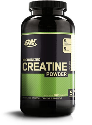 Optimum Nutrition Micronizec creatine power bottle