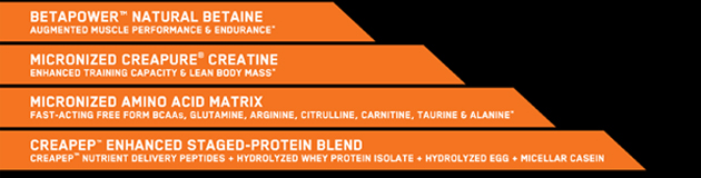 Betapower™ Natural Betaine, Augmented Muscle Performance & Endurance*; Micronized Creapure® Creatine, Enhanced Training Capacity & Lean Body Mass*; Micronized Amino Acid Matrix, Fast-Acting Free Form BCAAs, Glutamine, Arginine, Citrulline, Carniting, Taurine & Alanine*; Creapep™ enhanced Staged-Protein Blend, Creapep™ Nutrient Delivery Peptides + Hydrolyzed Whey Protein Isolate + Hydrolyzed Egg + Micellar Casein