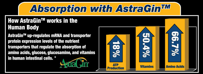 Absorption with AstraGin™. How AstraGin™ works in the Human Body: AstraGin™ up regulates mRNA and transporter protein expression levels of the nutrient transporters that regulate the absorption of amino acids, glucose, glucosamine, and vitamins in human intestinal cells.*