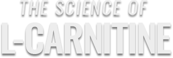 the science of l-carnitine bolded
