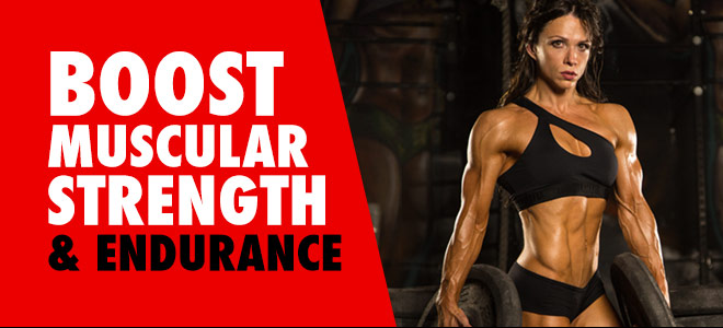 Boost Muscular Strength and Endurance