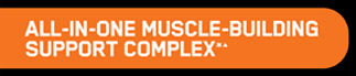 All-In-One Muscle-Building Support Complex*