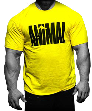 Animal iconic t shirt by universal nutrition at for Animal tee shirts online