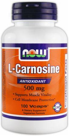 L carnosine dosage