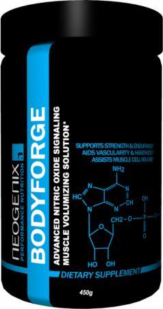BodyForge