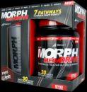 Morph MegaDrive