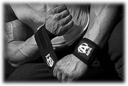Animal Wrist Wraps