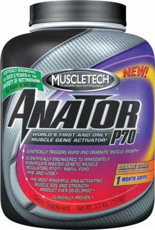 Anator P70