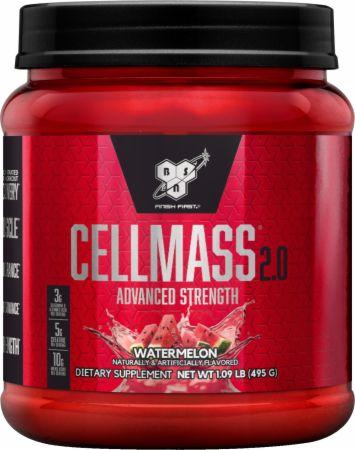 CellMass 2.0
