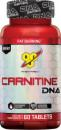 carnitine dna pane
