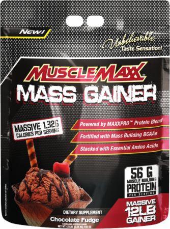 Musclemaxx mass gainer price