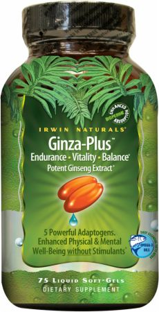 Irwin Naturals Advanced Ginza-Plus