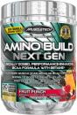 MuscleTech-Amino-Build-Next-Gen-2-Bottle-Combo
