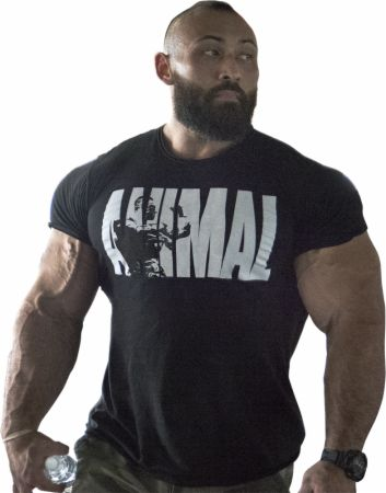 Animal Iconic T-Shirt Black/White XL - Men's T-Shirts Animal