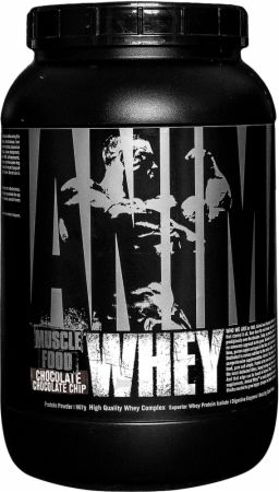 Image of Animal Animal Whey 2 Lbs. Chocolate Chocolate Chip