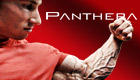 panthera-about-pane.jpg