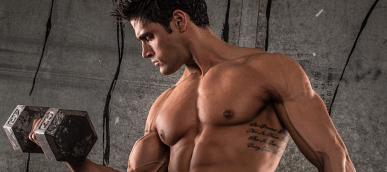 Sports Nutrition & Workout Support