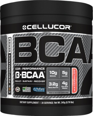 top 10 bcaa supplements 2013
